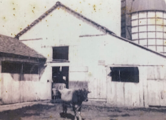 Residence Dairy in 1928